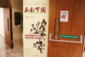 south west china thriving energy artwork show