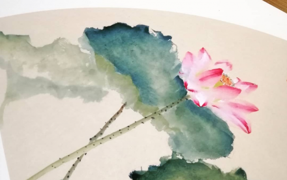Chinese painting lotus by Steven Fang Yucheng