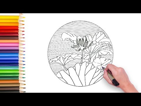lotus flower drawing video
